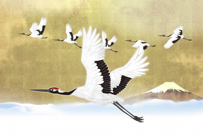 Hình ảnh chim Hạc bay lượn trên bầu trời